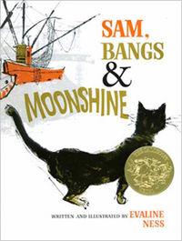 Sam Bangs n Moonshine